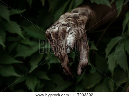Horror And Halloween Theme: Terrible Dirty Hand With Black Fingernails Zombie Crawls Out Of Green Le
