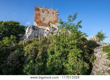 Ruins In Mikulov