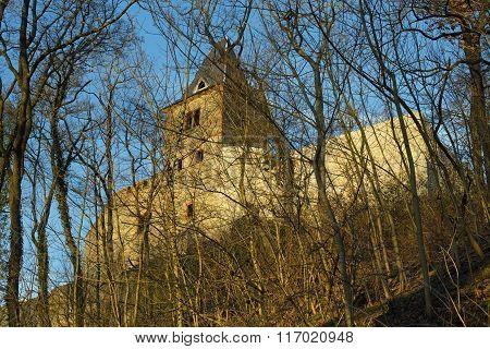 Castle ruin Frankenstein