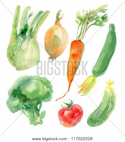Watercolor vegetables set