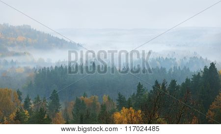 Gauja river valley in autumn during fog. Latvia.