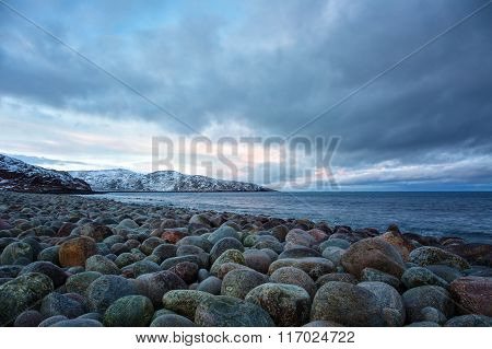Beach With Large Round Stones On The Coast Of The Barents Sea,  Arctic