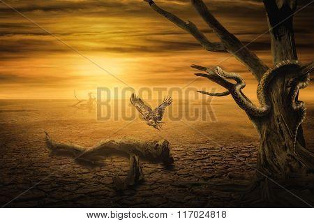Background Sunset In The Desert