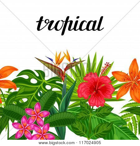 Seamless horizontal border with tropical plants, leaves and flowers. Background made without clippin