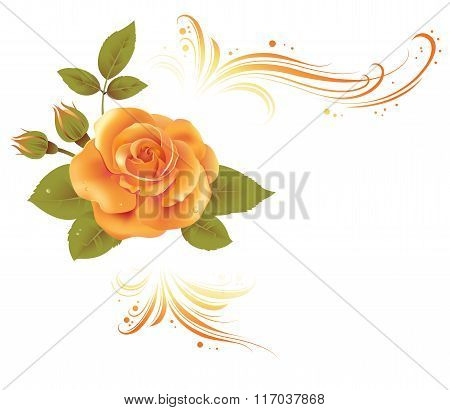 Invitation Card With Flower
