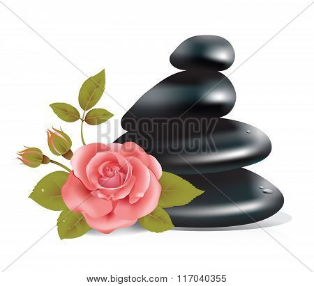 Spa Composition With Rose