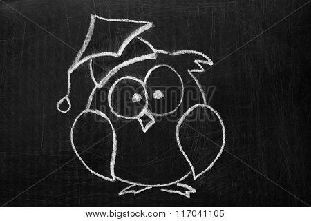 Owl On The Chalkboard .