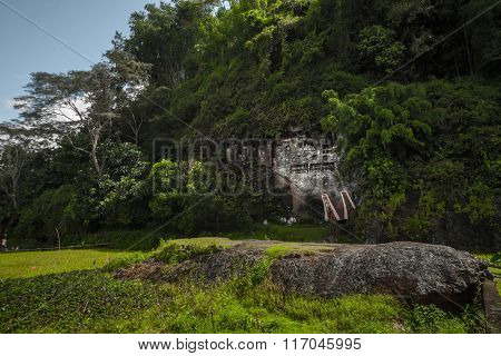 Tana Toraja's traditional cemetery in a rocky wall in a forest. Sulawesi island, Indonesia