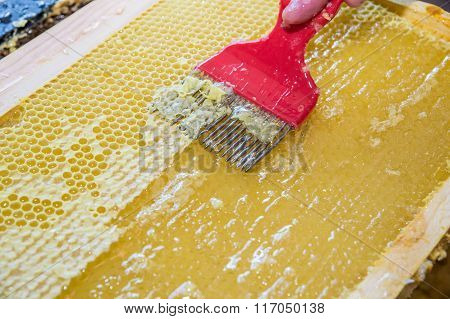 Close Up Of Human Hand Extracting Honey From Honeycomb
