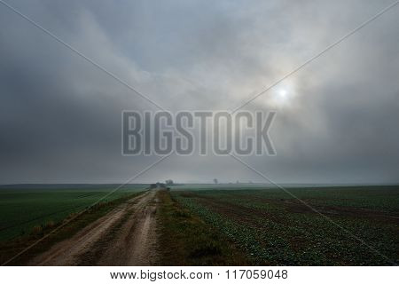 A Road In The Field In Overcast Day, Latvia