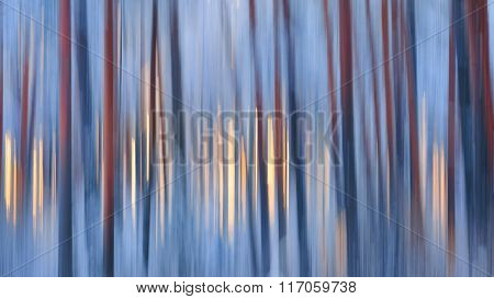 Texture Of Smeared Red Pine Tree Lines In Winter