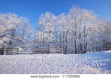 Fence And A Lamppost In A Winter Wonderland With Hoarfrost And Snow Covered Trees On A Sunny Day