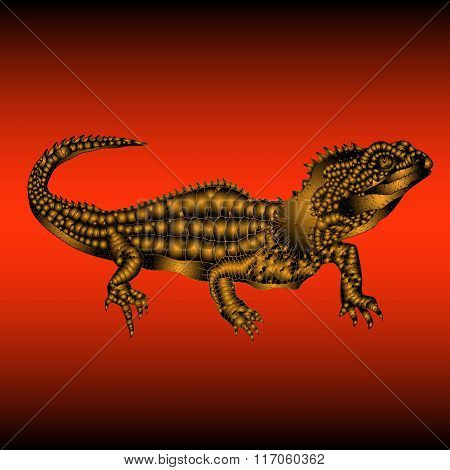 tuatara lizard gold