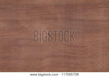Bubinga (Guibourtia demeusil) Africa