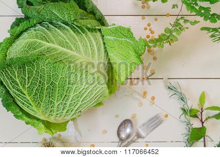 Cabbage On A Cream Background