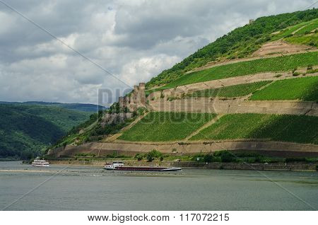 Cargo Ship, Medieval Castle (fortress) Ehrenfels And Vineyards On The Slope Of Rhine River Bank, Rue