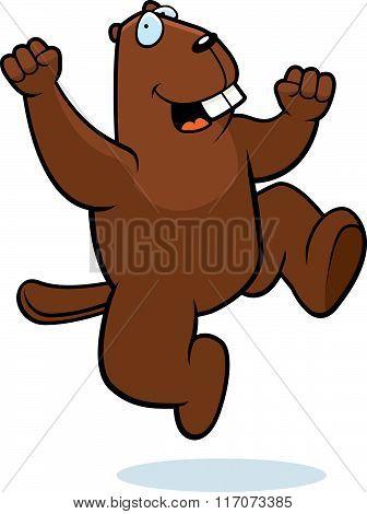 Beaver Jumping