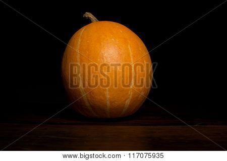 A Pumpkin in the dark background, studio picture