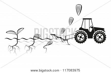 Farmer seeding crops at field
