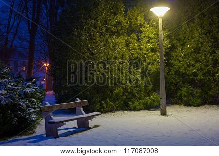 Snowy park at night