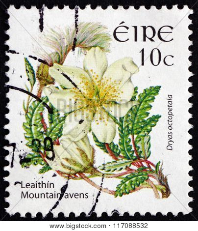 Postage Stamp Ireland 2004 Mountain Avens, Flowering Plant