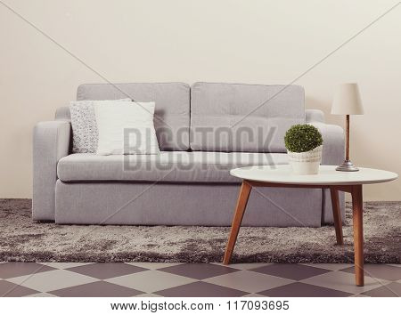 Interior with grey sofa and modern table