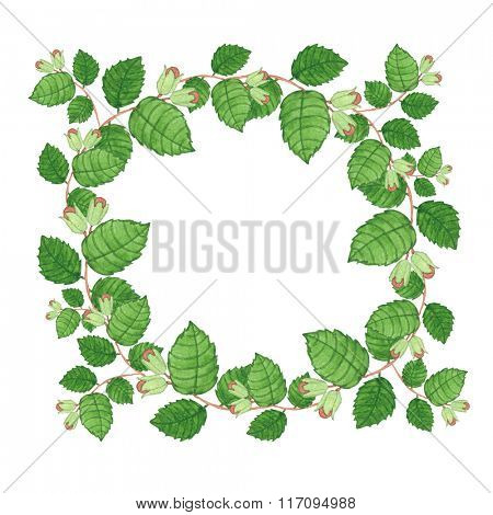 Watercolor summer wreath with forest nuts on white. Watercolor illustration isolated on white background. Nature and organic concept with copy space.