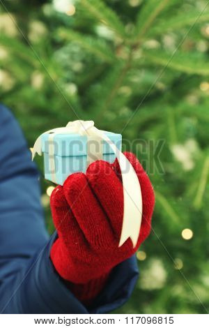 Woman holding small present box on blurred fir tree background