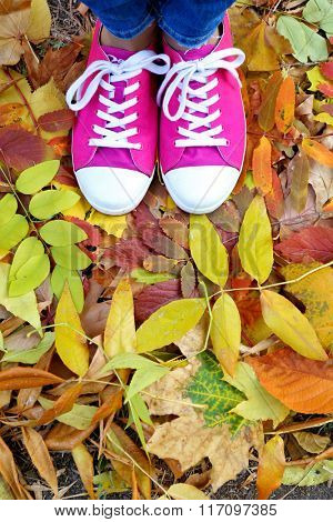 Woman in pink trainers standing on foliage
