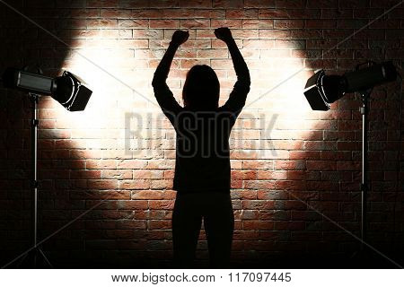 Silhouette of woman with flash on brick wall background
