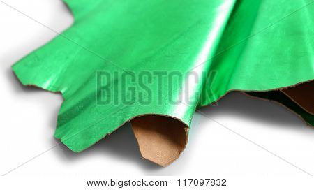 Green leather texture on white background, close up