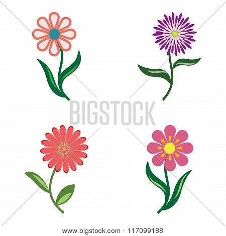Flower icon set. Camomile, chamomile, daisy, chrysanthemum. Floral symbol. Red, lilac, pink colored