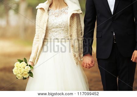 Beautiful groom and bride holding hands on a forest background
