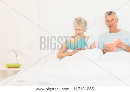 Senior couple reading books at bed