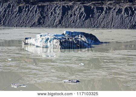 Icebergs In New Zealand 456