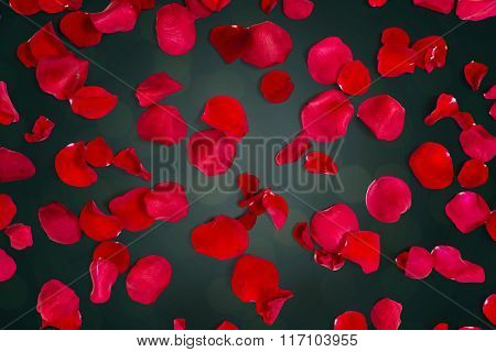 close up of red rose petals over lights background