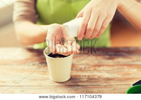 close up of woman sowing seeds to soil in pot