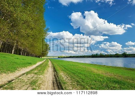 spring forest with ground road near river, bright landscape