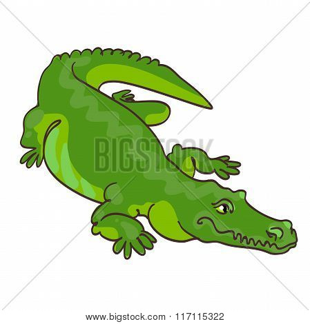 Green crocodile in cartoon style.