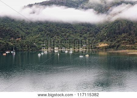 Queen Charlotte Sounds Picton
