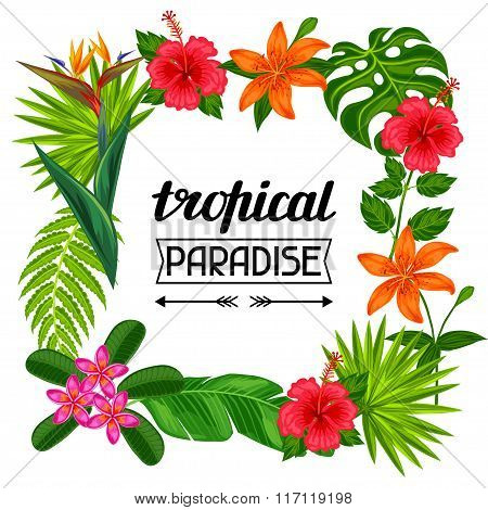 Tropical paradise frame with stylized leaves and flowers. Image for advertising booklets, banners, f