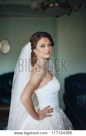 Beautiful Bride Posing In A Dress In The Room