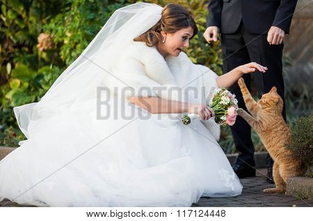 Pretty Bride With Bouquet In Hand Is Played With Red Cat Outdoors