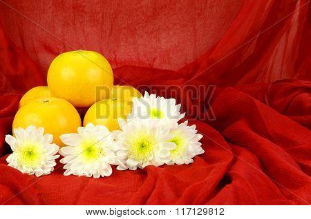Chinese New Year Oranges . Xin Nian Kuai Le.