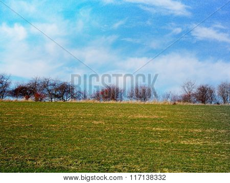 Photo Of Grassy Horizon With Blue Sky