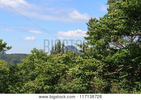 Table Mountain Lilienstein Seen From Bad Schandau In Saxon Switzerland