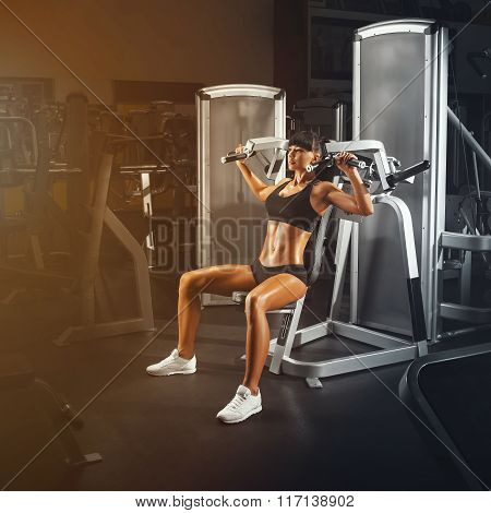 Perfect Fit Young Athletic Woman Doing Exercises On Special Sport Equipment