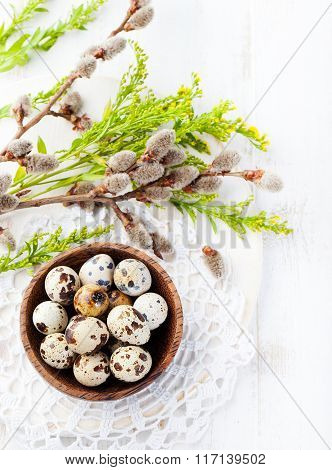 Quail eggs in a wooden bowl Easter white background Willow and green spring branch with leaves Top v