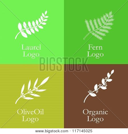 Set Of Flower Style Elements For Labels And Badges For Organic Food, On The Nature Background