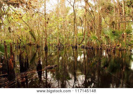 Kitching Creek
